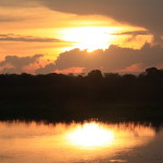 Featured posts:  Wild Pantanal and FIFA Worldcup@Conundrum